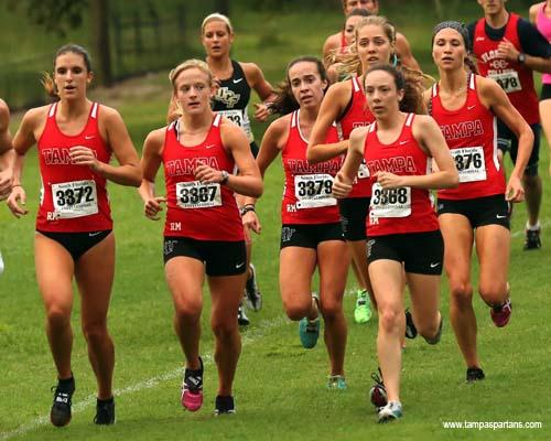 missota conference cross country meet management