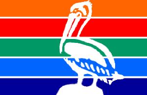 St pete logo